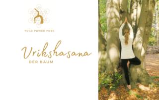 Der Baum Vrikshasana